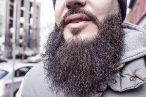 barba lunga e ispida